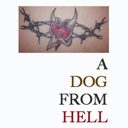 a dog from hell